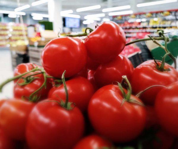 Tomaatteja tyrkyllä